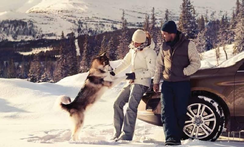 Asigura-te ca masina ta Volvo este gata sa intampine iarna
